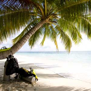 Scuba gear and palm tree diving holiday Phuket bucket list